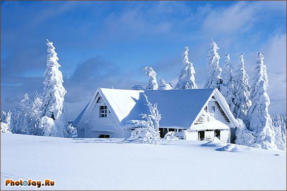 Фотографировать зимой